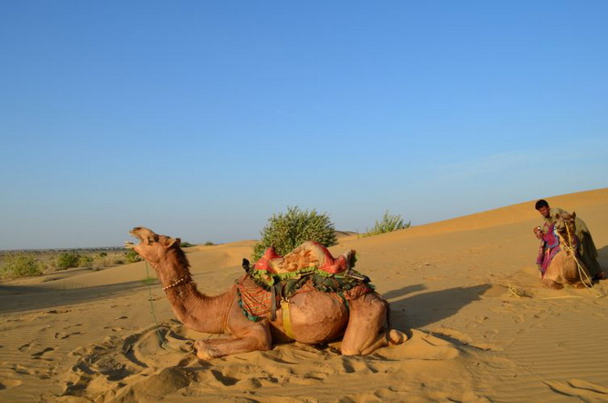 thar desert essay Tharparkar consists of two words, thar means 'desert' while parkar stands for 'the other side' years back, it was known as thar and parkar but subsequently became just one word 'tharparkar' for the two distinct parts of sindh province.